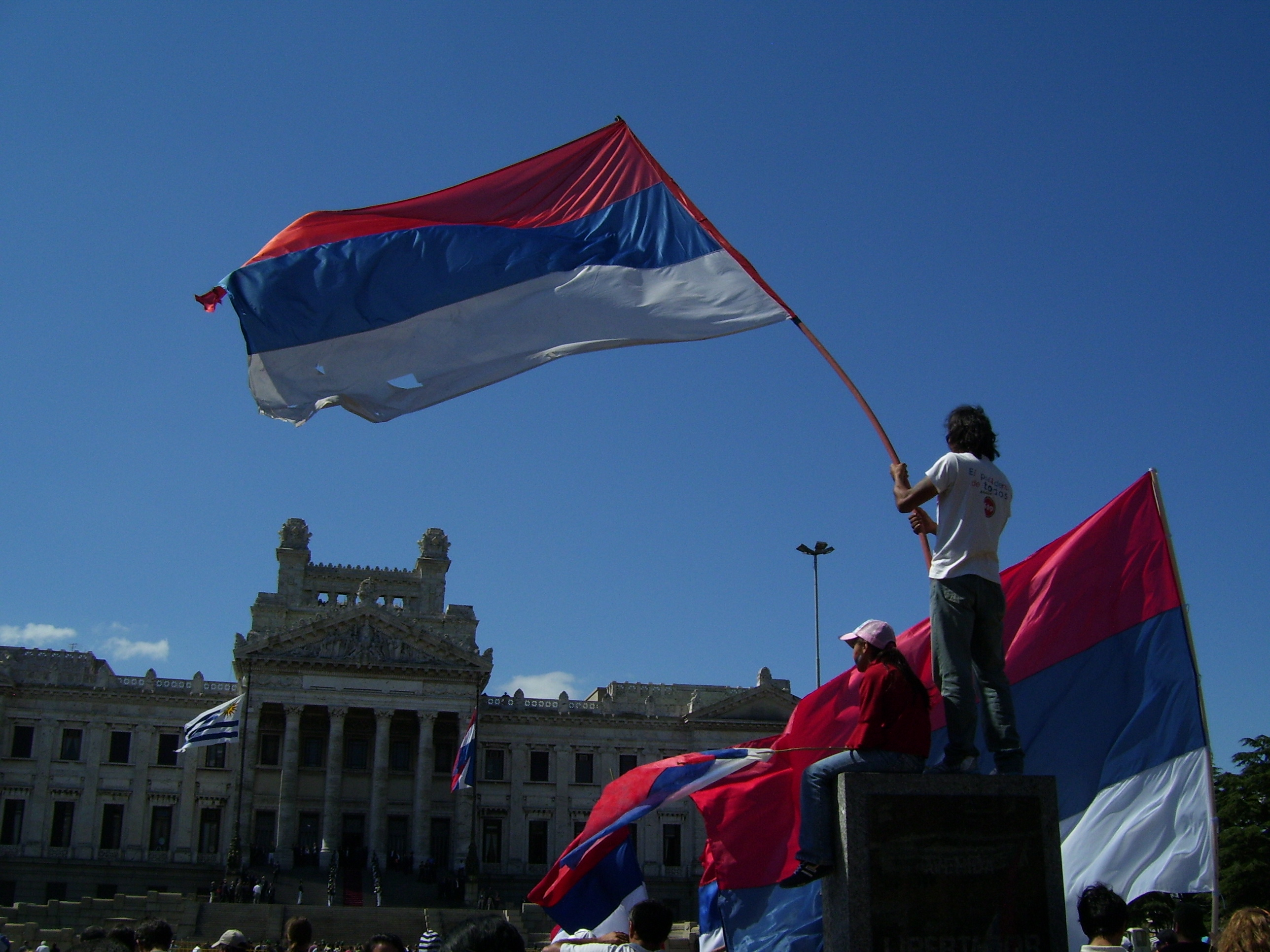 banderafrenteamplioprimeromarzo2010
