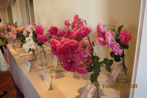 exposicion-rosas-2012-016